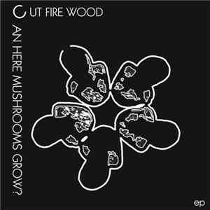 Cut Fire Wood - Can Here Mushrooms Grow